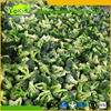 Iqf Frozen Green Broccoli With Export Standard