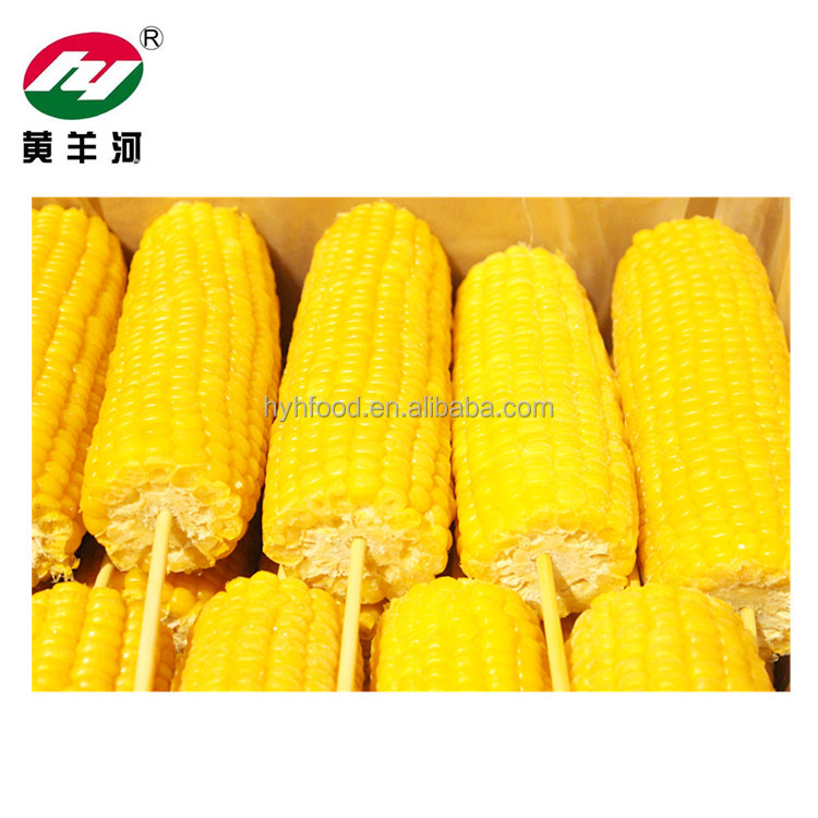 IQF Sweet Corn Cob Fresh Steamed Corn