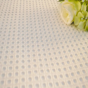 HLPC254 Jacquard 100%polyester mesh punching design embroidery fabric
