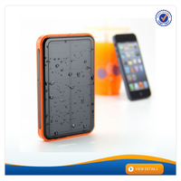 AWC609 Dual USB Outputs 10000mAh Portable Solar Panel Powerbank Charger