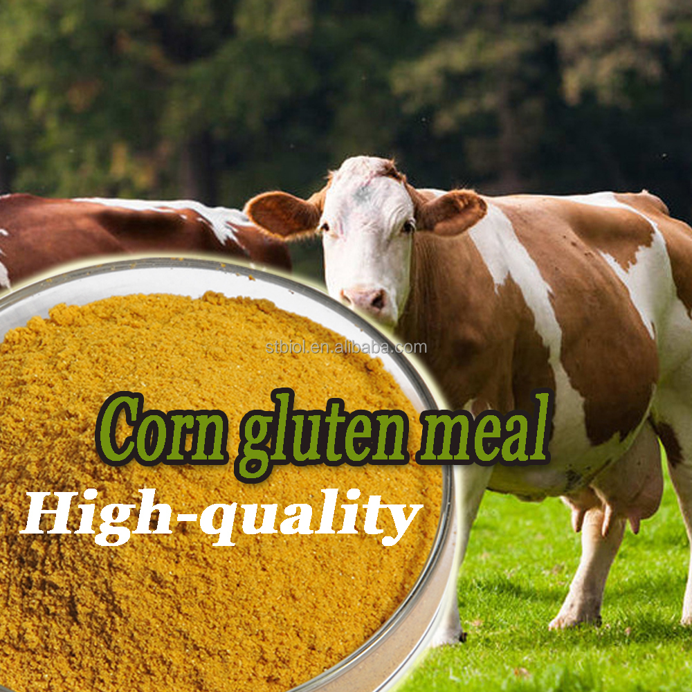 Nutritional Animal Feed Additives feed grade poultry feed corn gluten meal 60%