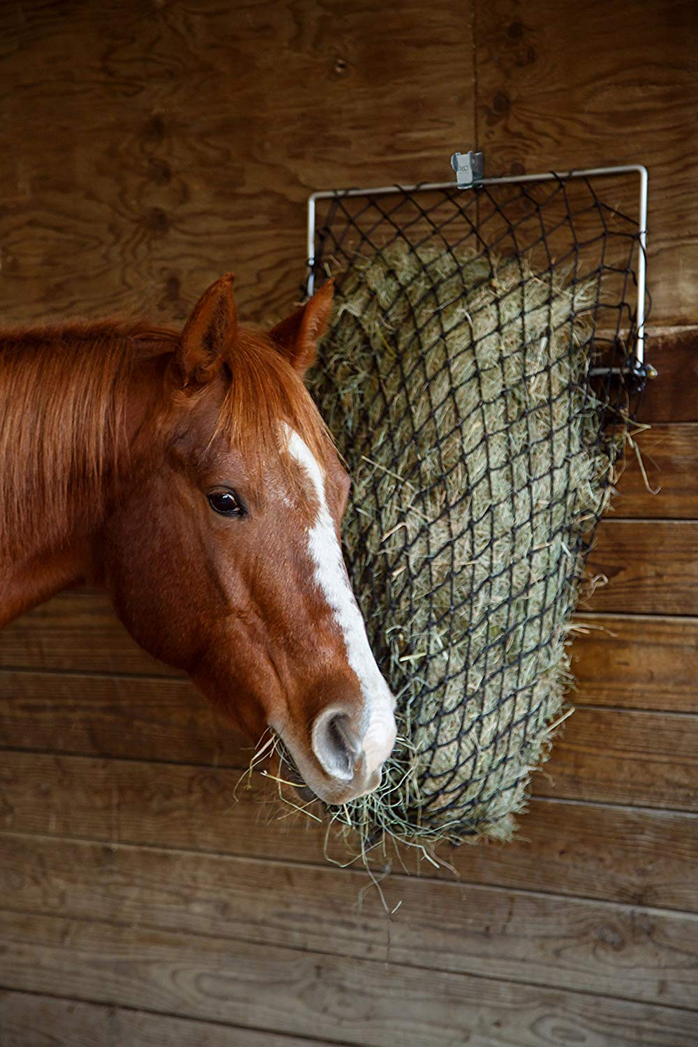 Cheap Slow Feed Hay, find Slow Feed Hay deals on line at