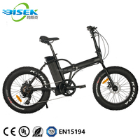 China Manufacturing 20'' Fat Tire Folding E-Bike/48V 500W Electric Bicycle With EN15194 Certificate