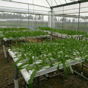 low cost agricultural greenhouses aquaponics growing systems
