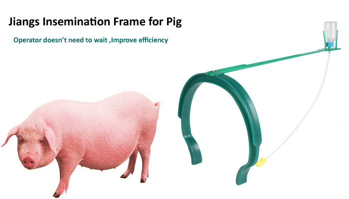 Jiangs Hmulti-color Artificial Convenient Insemination Frame For Sow ...