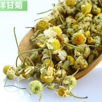Camomile Tea Chamomile Organic Wild Flowers From Greece Flower Product On Alibaba