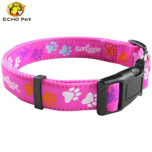 Wholesale Adjustable polyester Nylon paper dog collar and leash