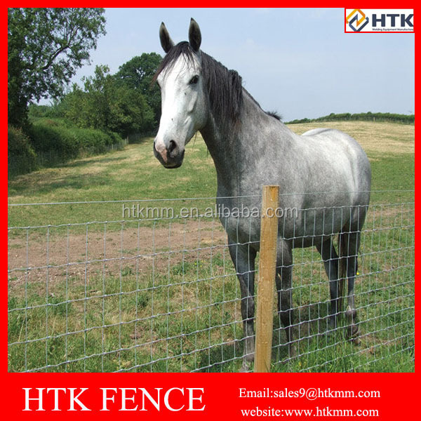 Galvanized Steel Wire Horse Fence Mesh/Farm Fence for Horse, Cattle, Sheep