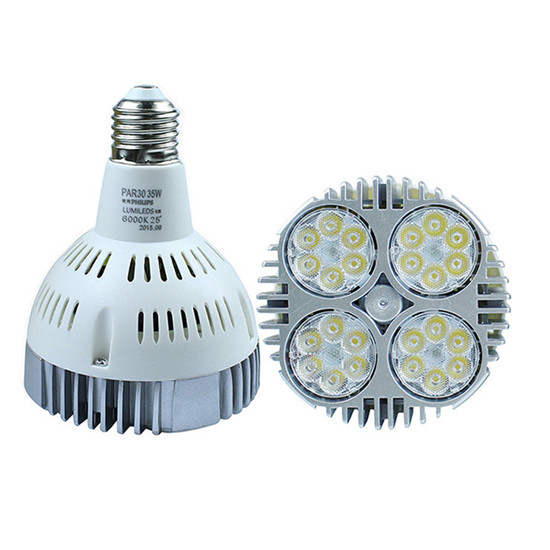 35W high quality chip LED Ceiling spot light