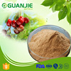 GMP&ISO Certificate 100% Organic Acerola Cherry Extract Powder 17%,25% Vitamin C