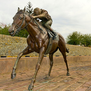 Outdoor Bronze Life Size Horse for Sale