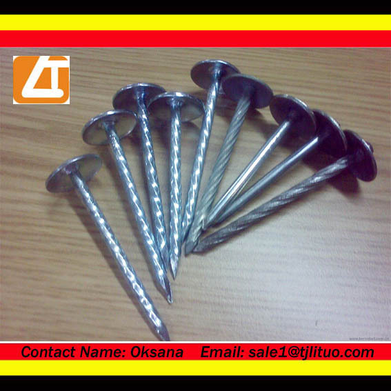 Roof nails factory smooth hdg coil roofing nails