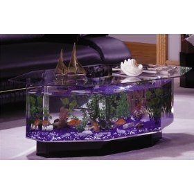 Acquario Tavolino Da Salotto.Acquario Del Tavolino Da Salotto 40 Galloni Buy Acquario Product On Alibaba Com