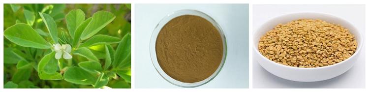 100% Natural Seed Plant Powder Testofen Fenugreek Extract.jpg