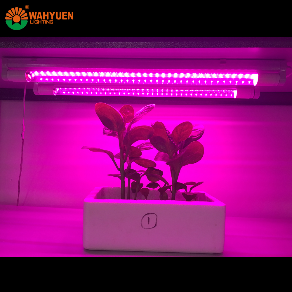Led grow light 12v dc led grow light 12v dc suppliers and led grow light 12v dc led grow light 12v dc suppliers and manufacturers at alibaba parisarafo Gallery