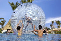 Water park equipment, Special Inflatable water zorb ball for sale
