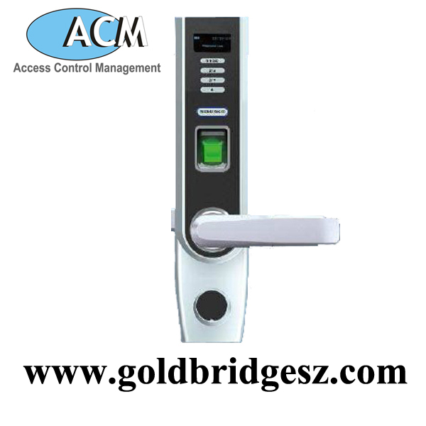 China factory Fence Fingerprint Garden Gate Lock