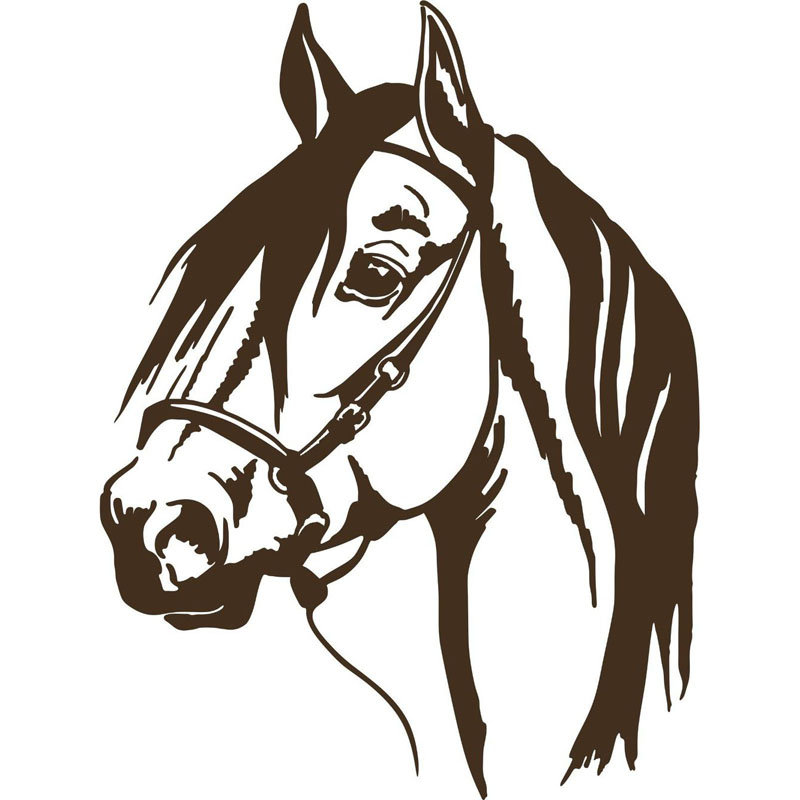 Horse front face vector