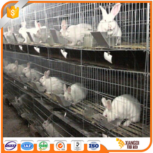 China Manufacturer build outdoor rabbit farming cage