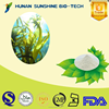 High quality Brown Algae extract powder/Kelp extract/Fucoidan 98%