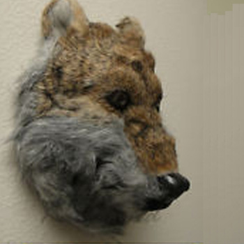 Taxidermy Synthetic Hanging Bear Head Wall Decoration - Buy Bear ...