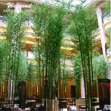 promotion chanceux bambou acheter des chanceux bambou produits et articles en promotion. Black Bedroom Furniture Sets. Home Design Ideas