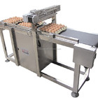 E6 Egg Code labeling machine for Printing Machine
