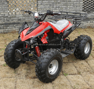 china cheap electric ATV 4x4 1000W 48v for adult