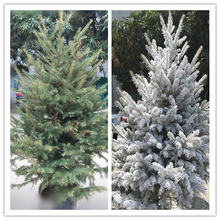 Environmental Plastic Christmas fake snow cotton snow decorations for Christmas Day