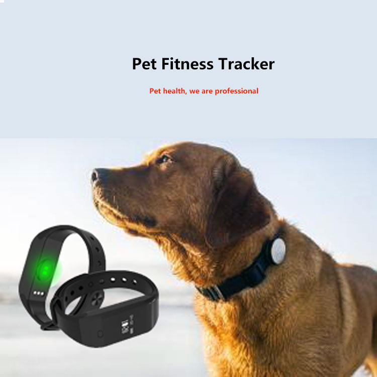 custom design waterproof IP67 mini pet dog activity monitor