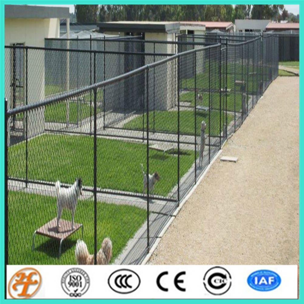 recintos para perros