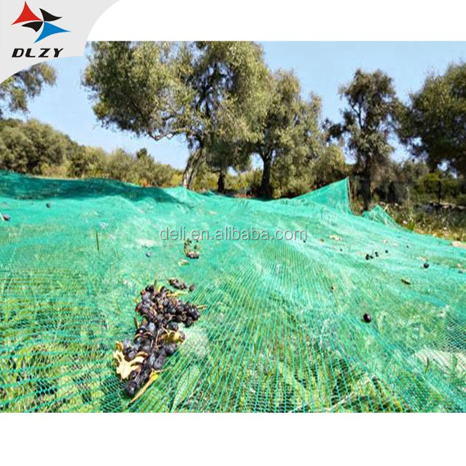 PE Olive Netting for Fruit Harvest