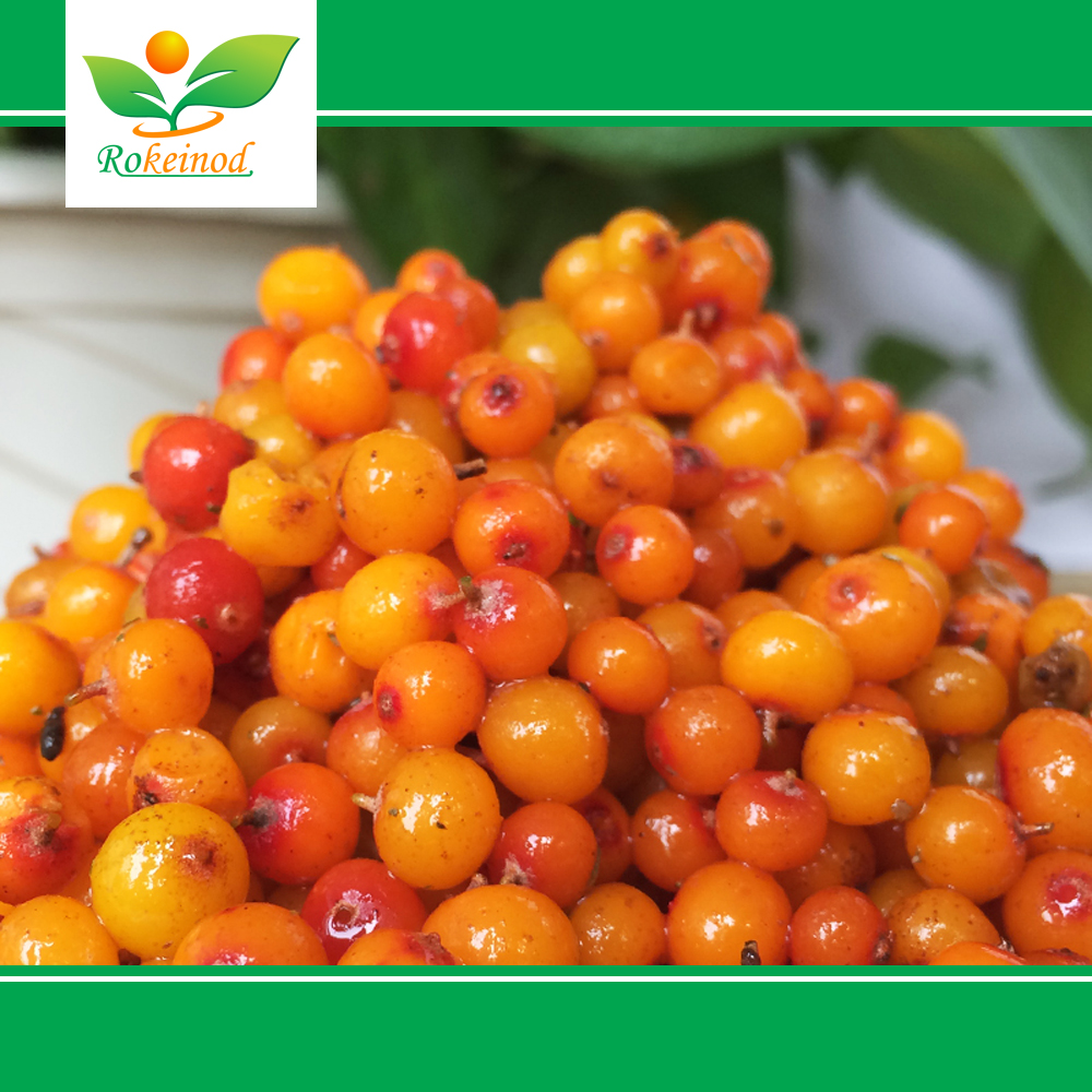 Hot-sell Natural Planting High Quality seabuckthorn jam