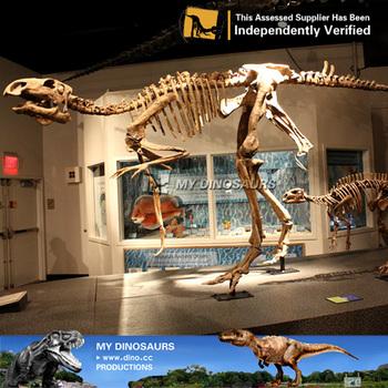 Il Mio Dino Giochi Di Dinosauri Resina Bactrosaurus Scheletro Per