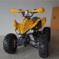 Tao Motor Benzine Mini Kids Gas Powered ATV 50cc