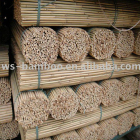 Agriculture Products/Raw Materials/Tonkin bamboo cane