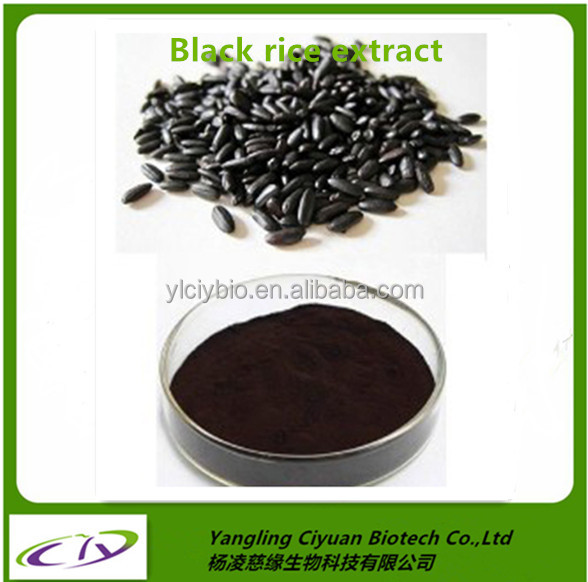 100% Pure and Organic Herb extract reliable black rice extract suppliers black rice extract powder