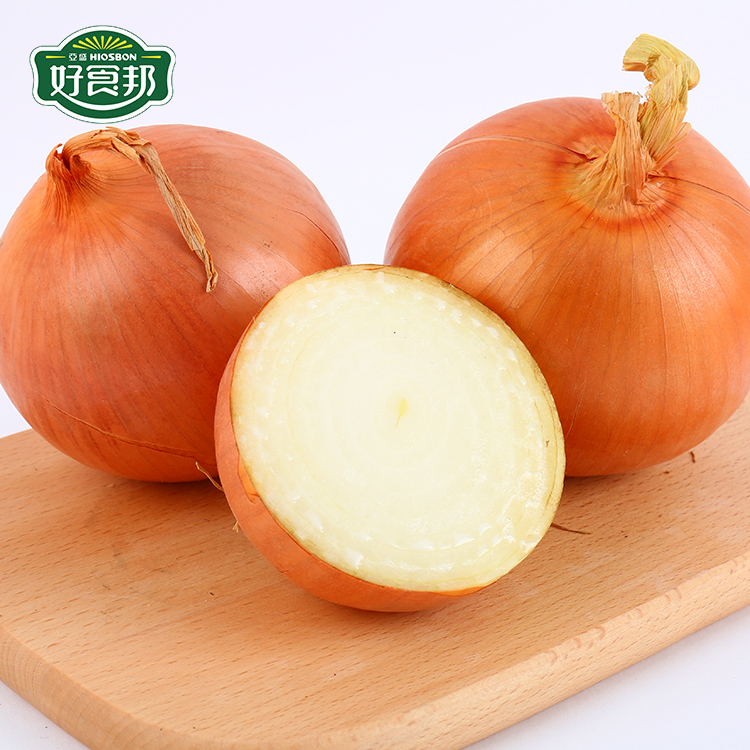 New Crop Fresh Yellow Onion 60mm-80mm/80mm+