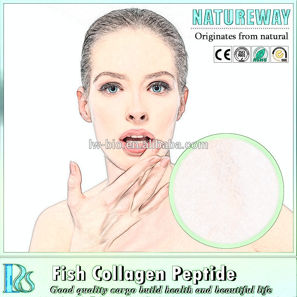 Food grade cosmetic grade collagen powder protein fish hydrolyzed collagen powder,raw whey protein powder