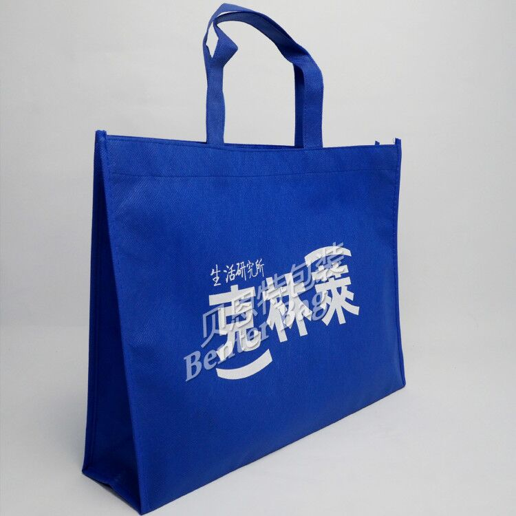 Ecofriendly Promotion non woven bag with your own logo made in china