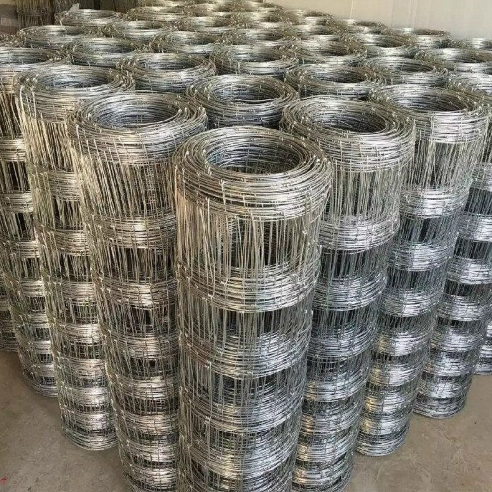Decorative Double Wire Fence Panels, Decorative Double Wire Fence ...