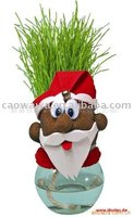 grass doll santa gift. Grass head,grass doll