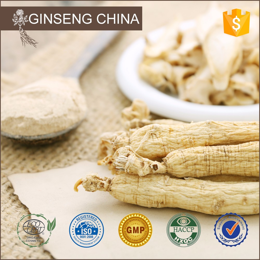 In Pakistan Panax 20% Ginsenosides American Ginseng 4:1 Powdered Extract