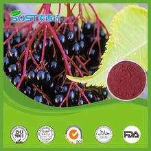 Cheap Anti-aging Fruit Extract Organic Acai Powder