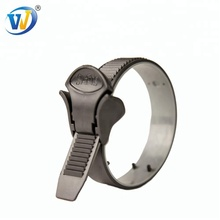 Worm drive stainless steel rad 316 hose clamps