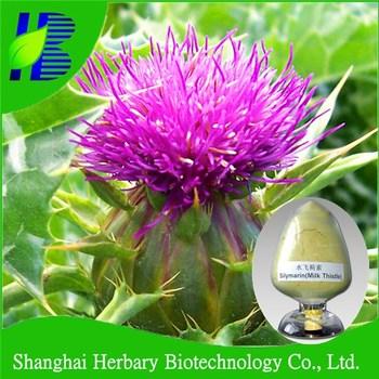 High quality chinese herbal medicine milk thistle extract/silymarin dab10 uv80%