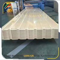 Metal roofing color steel sheet design ppgi coil