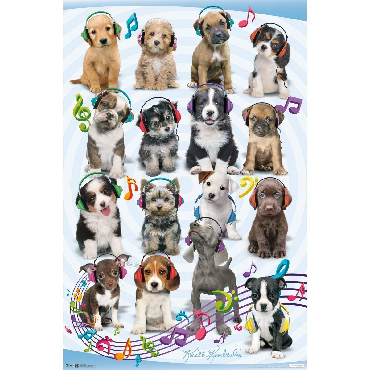 """60"""" x 80"""" Blanket Comfort Warmth Soft Plush Throw for Couch Dog Puppy Headphones"""