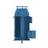 W50 V1 Industrial AC Induction Motor for Pump