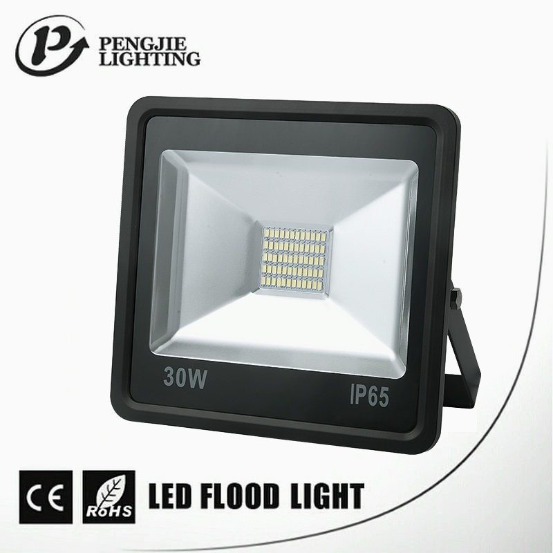 Pengjie Manufacturer 10W Bridgelux Led Flood 30Watt Outdoor Light Zhongshan